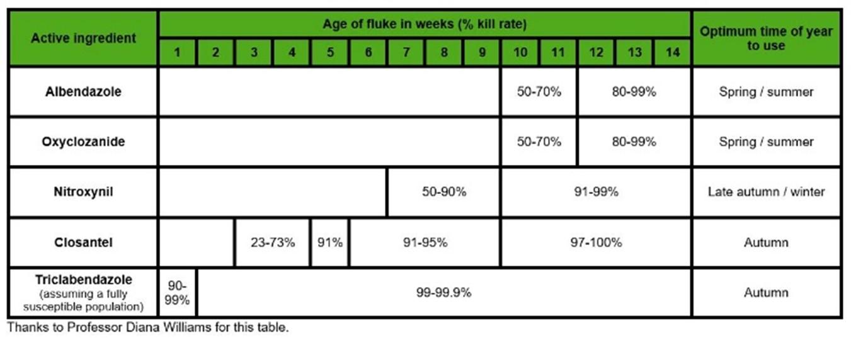 fluke treatment table